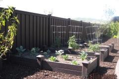 garden-boxes006