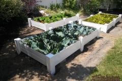 garden-boxes009