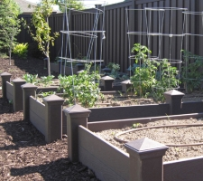 a picture of garden boxes